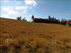Parcelas en sector Liumalla, entre Villarrica y Licán Ray