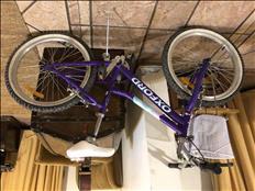 Bicicleta Niña Oxford