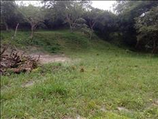 La mejor tierra lote negociable en el Tolima
