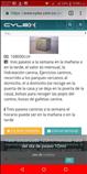 PASEOS Y ENTRENAMIENTOS PARA PERRITOS BUENAVENTURA