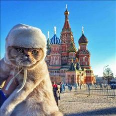 Idioma Ruso con profesora nativa