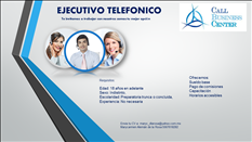 EJECUTIVO TELEFONICO