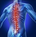 Quiropractico Dolor de cadera, Rodillas, Sacro?