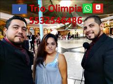 contratar trios en el estado de mexico