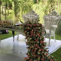 wedding planeer ilumina wedding service