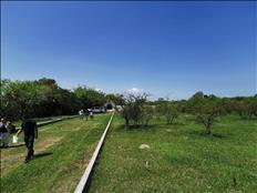 terrenos en proceso de urbanizacion en totolapan morelos