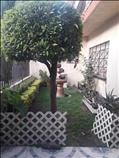 Remodele y disfrute a su gusto, casa en Prado Churubusco