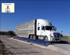 Básculas camioneras