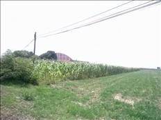 Compre este terreno en zona Industrial Chalco y ganará