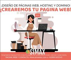 Hosting y Dominio web, Paginas Web