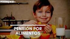 ABOGADOS PENSION ALIMENTICIA DE MIS HIJOS