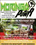 Promocion Navideña Moringa